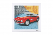 BMW CLASSIC CANVAS BMW 507